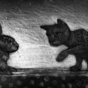Cat and Rabbit - Chris Salmon