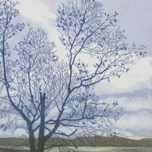 Applecross Tree - Helen Hanson