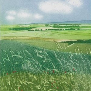 Chalk Downs - Helen Hanson