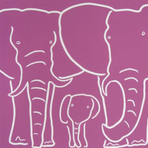 Elephant Family - Jane Bristowe