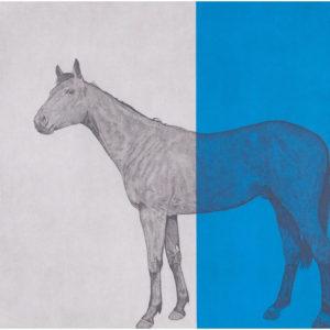 Horse Study Blue – Guy Allen