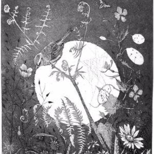 """""""The Sparrows Spider"""" by Julia McKenzie"""