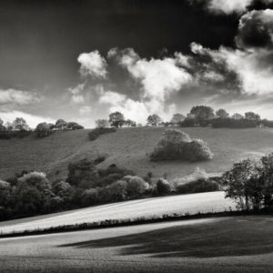 Long Shadows South Downs - Alex Arnaoudov