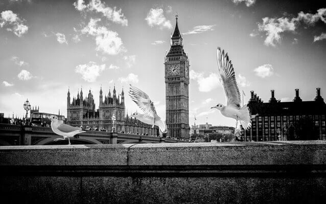 Progression - Photography by Alex Arnaoudov