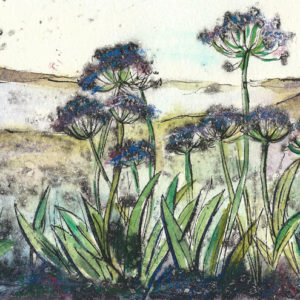 Cornwall summer - Vicky Oldfield