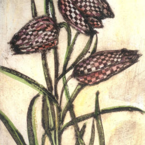 Snakes head fritillaria - Vicky Oldfield