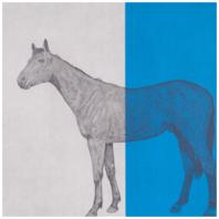 Horse Study Blue - Guy Allen - thumb
