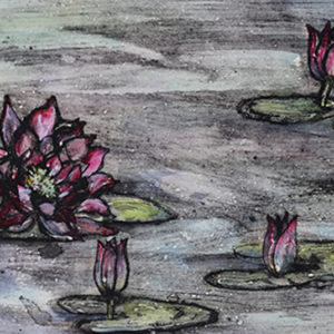 Waterlilies - Vicky Oldfield