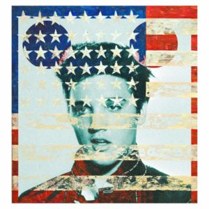 Elvis Flag - David Scheinmann