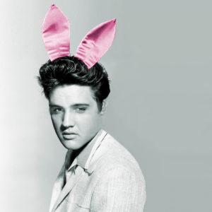 Elvis Playboy - David Scheinmann