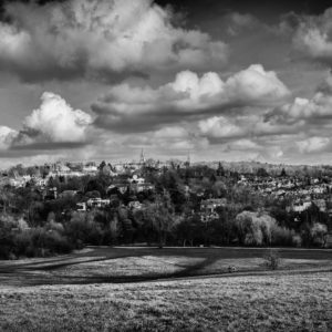 Fine Day at Hampstead Heath - Alex Arnaoudov