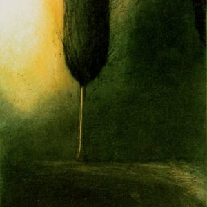 Tree - Stephen Lawlor