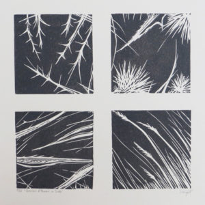 Grasses & Thorns in Slate - Sarah Knight