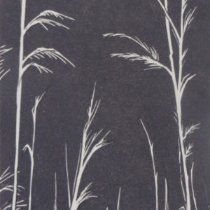 Suffolk Grasses in Slate - Sarah Knight